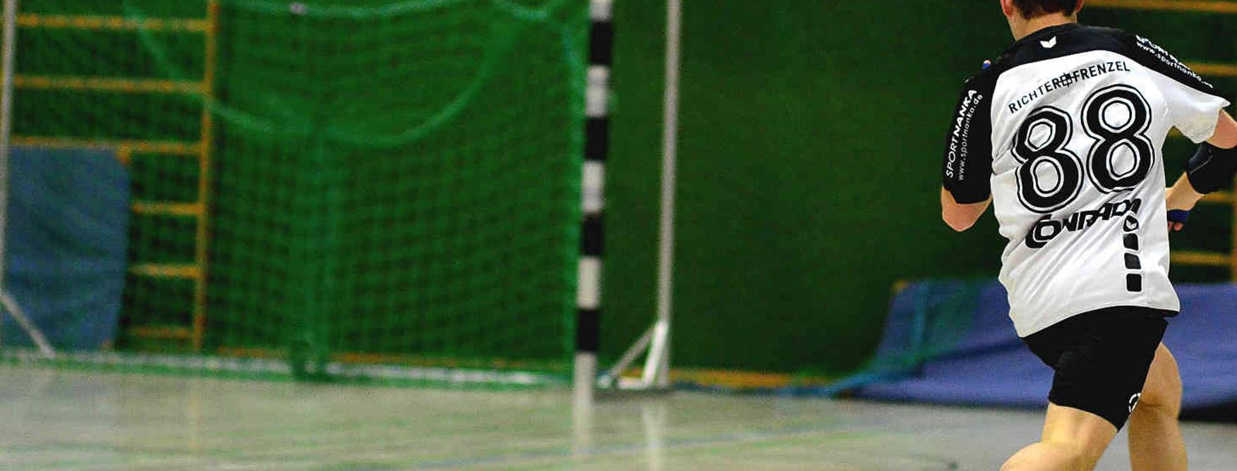 HC-Sulzbach-Handball-Tor